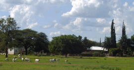 Maroela Hunting Farm
